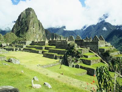申请秘鲁签证的预约流程
